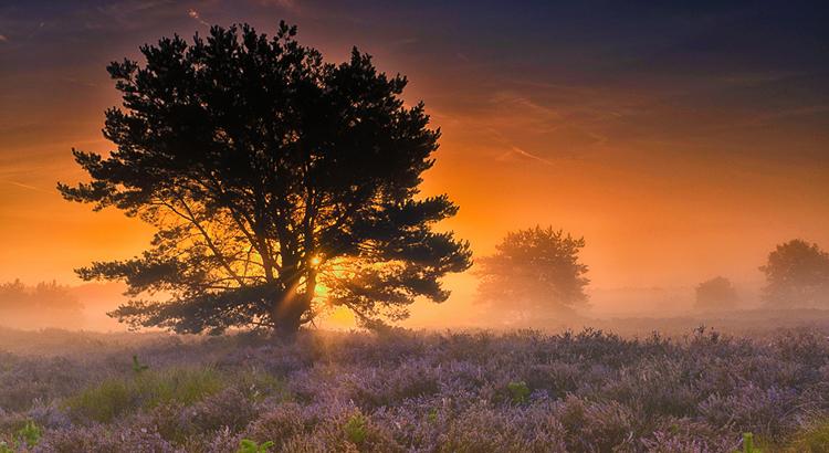 Prachtige kleuren op de Spinsterberg