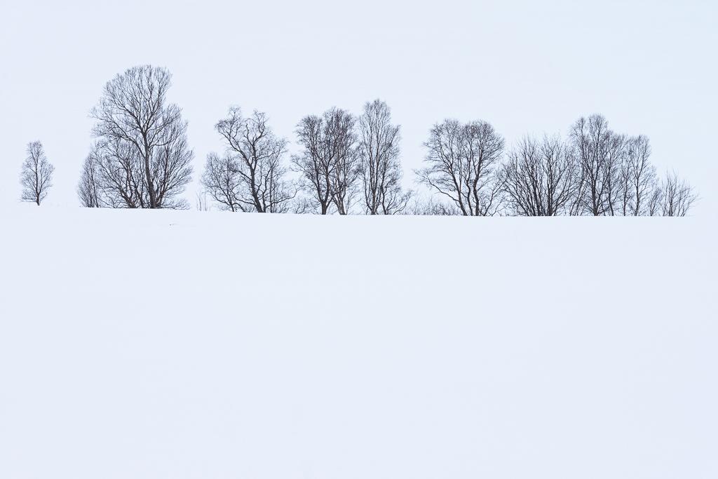 Pentekeningen in de sneeuw op de Vesterålen in Noord-Noorwegen