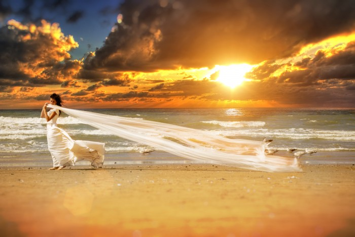 Trash The Dress - Recordmedia