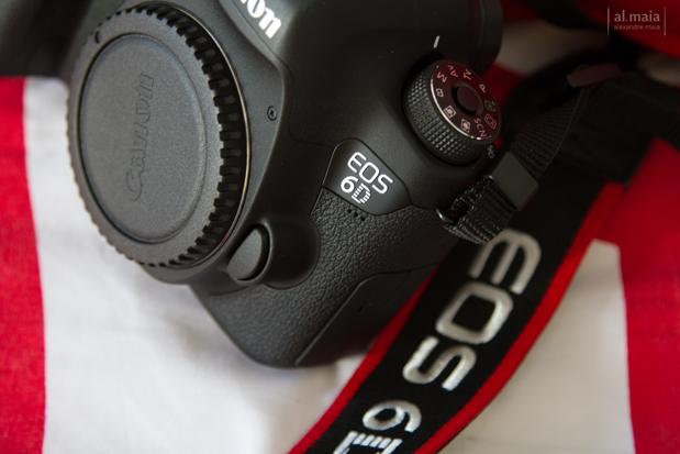 Review Canon 6D WG