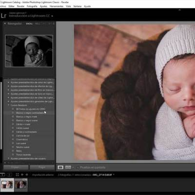 presets newborn lightroom