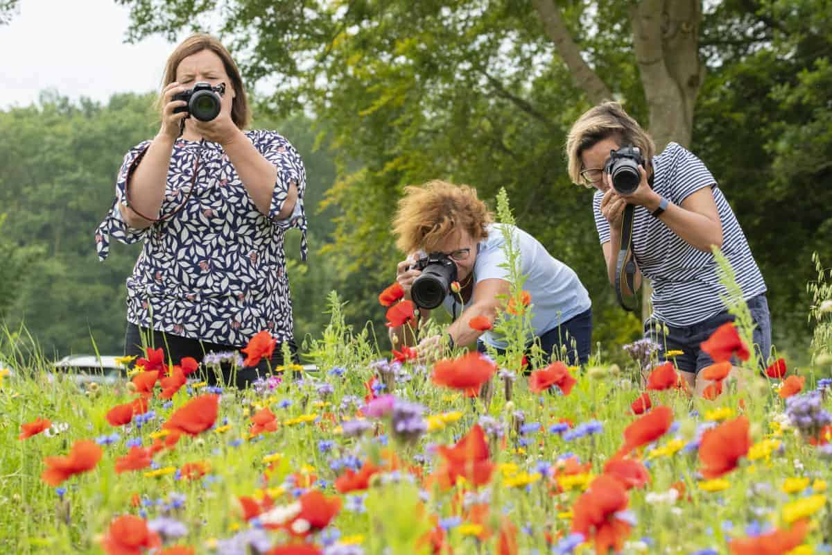 Fotoweekend Groninger Waddenkust - Inge, Lien en Marphy in het bloemenveld