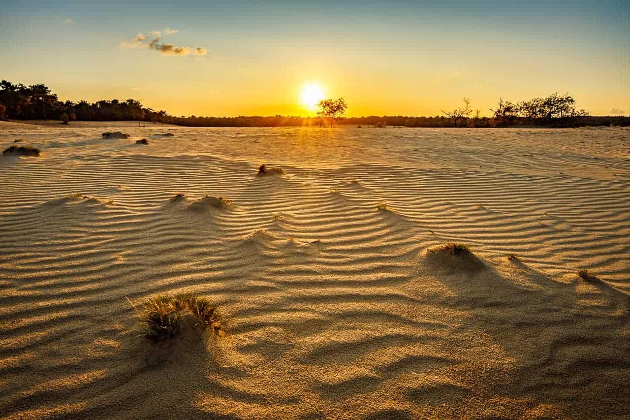 Fotografie weekend Brabant Loonense Duinen bij zonsopkomst