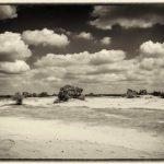 landschapsfotografie-Kootwijkerzand