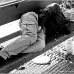 dakloze