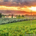 Landschap Toscane zonsondergang #toscane #landscape #landschapfotografie #zonsondergang #zonsondergangfotografie #fotografievanleeuwen #hdrphoto #avondfotografie #fotograafduiven #italy #italie #wijngaard #fotografiearthurvanleeuwen