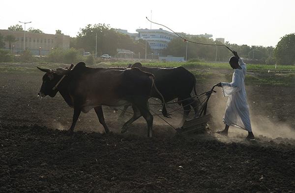 SUDAN_5