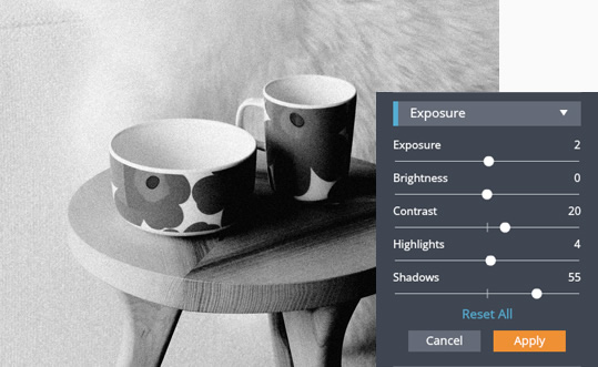 Online Black and White Filters | FotoJet