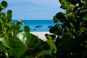 Tropiske vibber fra boardwalk´en langs Miami Beach i USA.