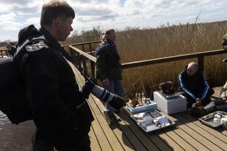 Mie Buus fra NaturmadThy serverer frokostsandwich og kaffe i rørskoven i Vejlerne.