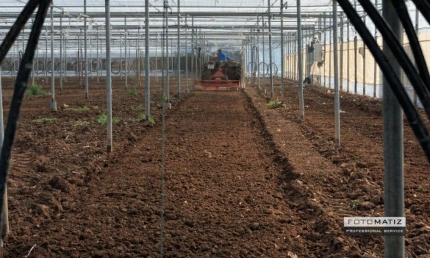 Green house agriculture