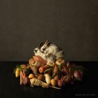 Rabbit's Paradise - Marie Cecile Thijs 2013
