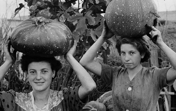 """ANDO GILARDI - Giovani donne portano zucche sulla testa. """"Le zucche, d'estate sono mangime, d'inverno cibo"""". Quando il gallo canta a Qualiano, ampia fotoinchiesta di Gilardi sulla sindacalizzazione dei braccianti agricoli, in questo paese particolarmente sentita. Qualiano (Napoli), ottobre 1954. © Fototeca Gilardi"""