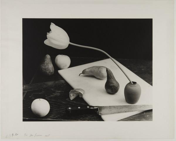 JAN GROOVER - Senza titolo / Untitled - 1985 © Musée de l'Elysée, Lausanne – Jan Groover Archives
