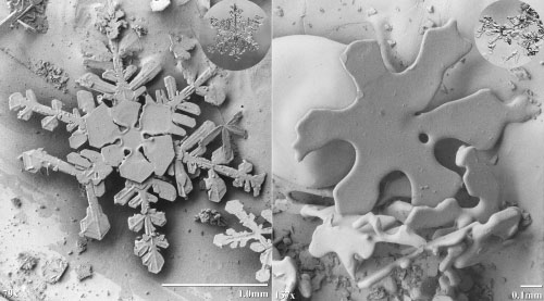 Copo de nieve bajo el microscopio
