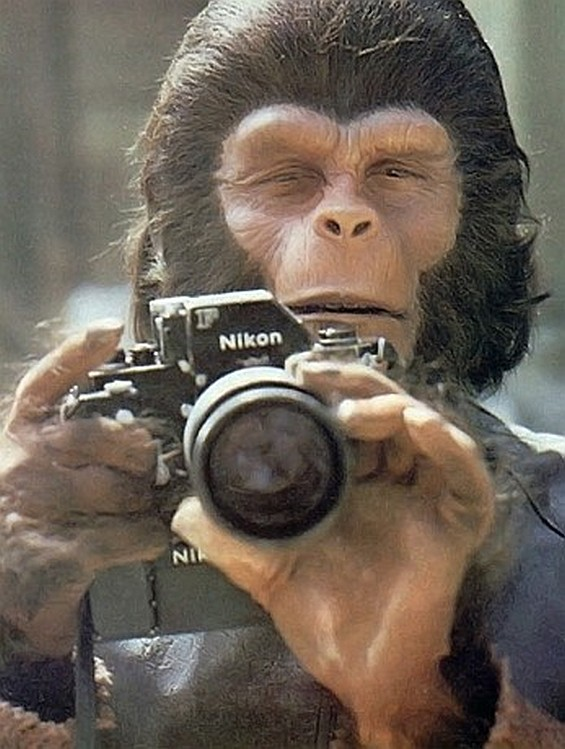 Roddy McDowall (as Cornelius from Planet of The Apes) with a Nikon F.