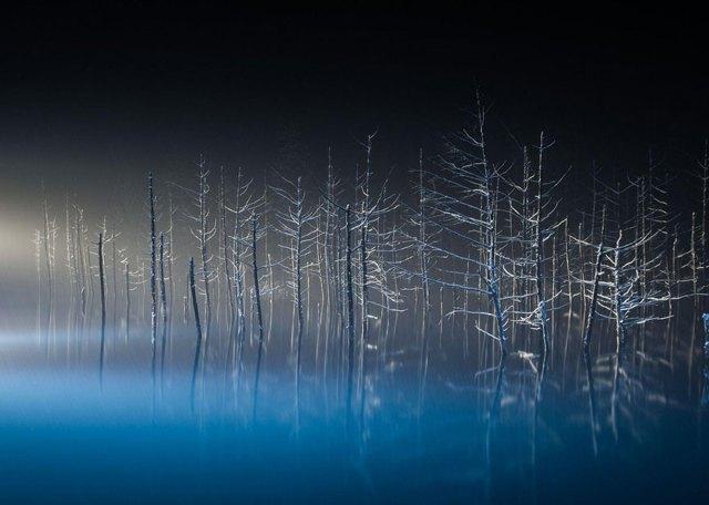 2016-national-geographic-gezgin-fotograflari-yarismasi-53