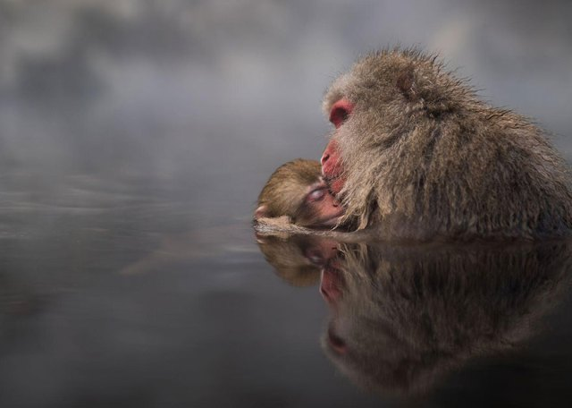 2016-national-geographic-gezgin-fotograflari-yarismasi-58