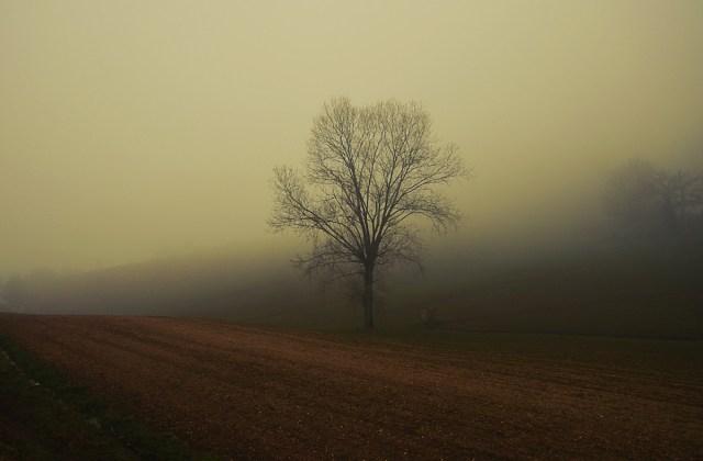 sisli havada fotoğraf çekmek