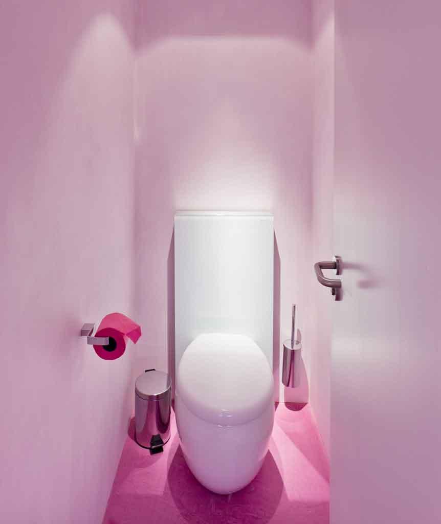toilet-rosa-limpia