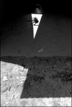 Il cane nel triangolo   Argentina, Buenos Aires, 2002