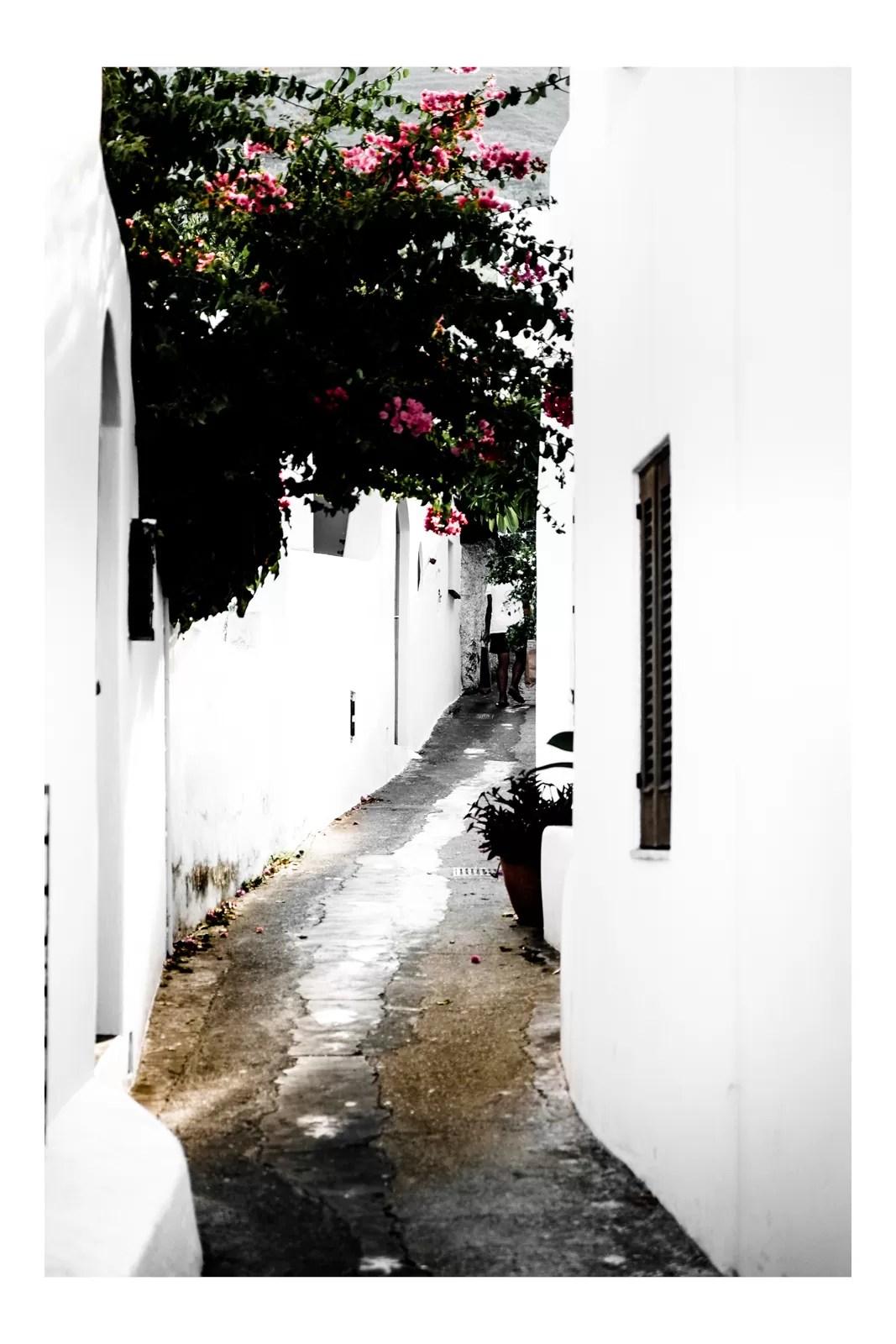 DSCF1435 - Aeolian Style - fotostreet.it