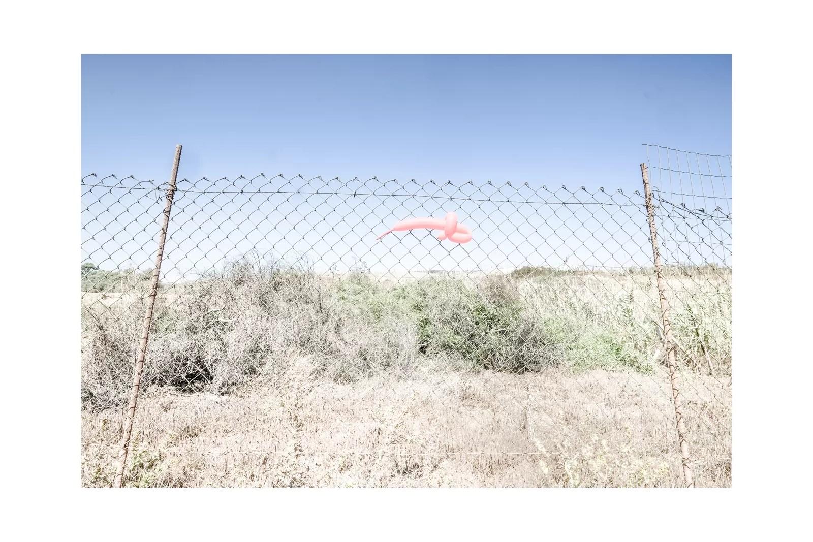 DSCF1300 - Immobili sotto il caldo sole di sicilia - fotostreet.it