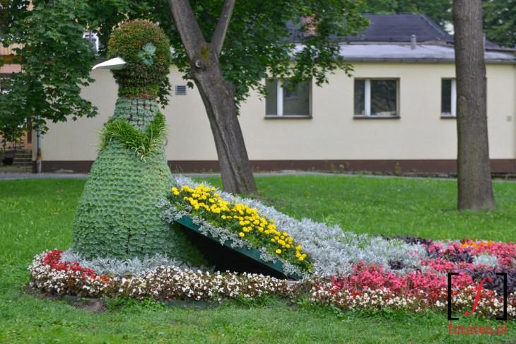 Rzeźba zkwiatów Goczałkowice.