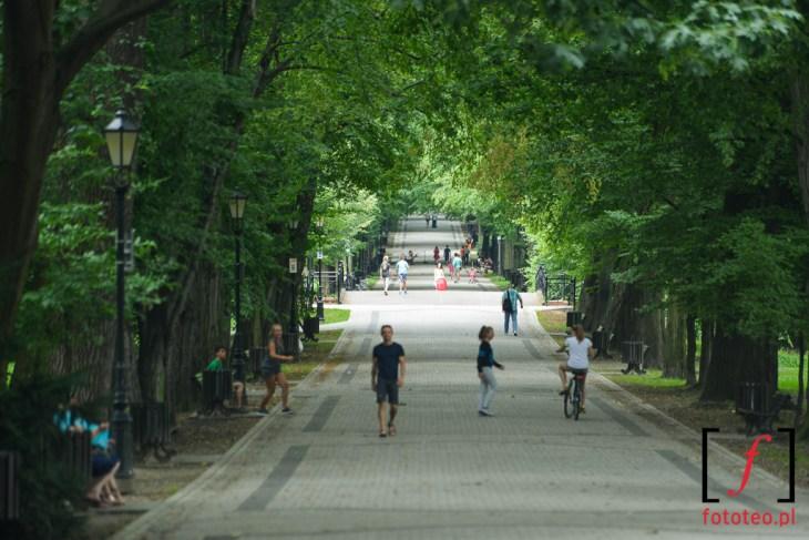 Park wPszczynie