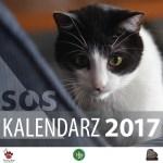 Kalendarz 2017 zfotografiami zwierząt