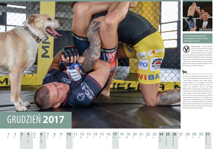 Kalendarz 2017 grudzien. Zawodnik MMA Robert Bryczek