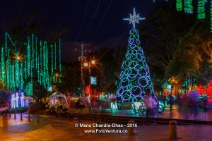 Bogota, Colombia - Christmas Tree on Plaza Usaquen