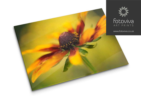 Acrylic picture frame print