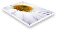 plain sided canvas print