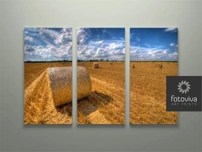 countryside canvas artwork split panel