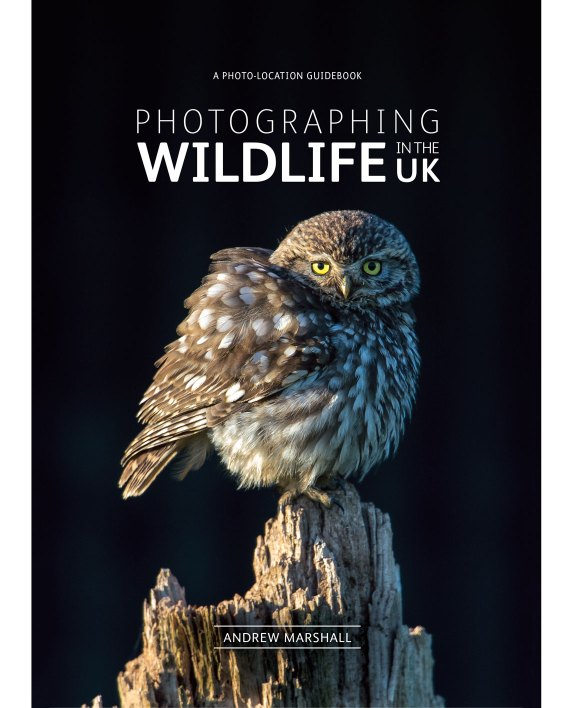 Photographing_Wildlfe_front_cover