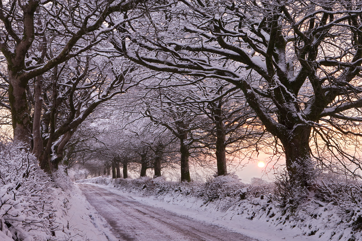 Snow covered Exmoor lane. Canon 1Ds Mk III, Canon 24-70mm at 60mm, ISO 100, 0.6 s at f/16, January. ©Adam Burton