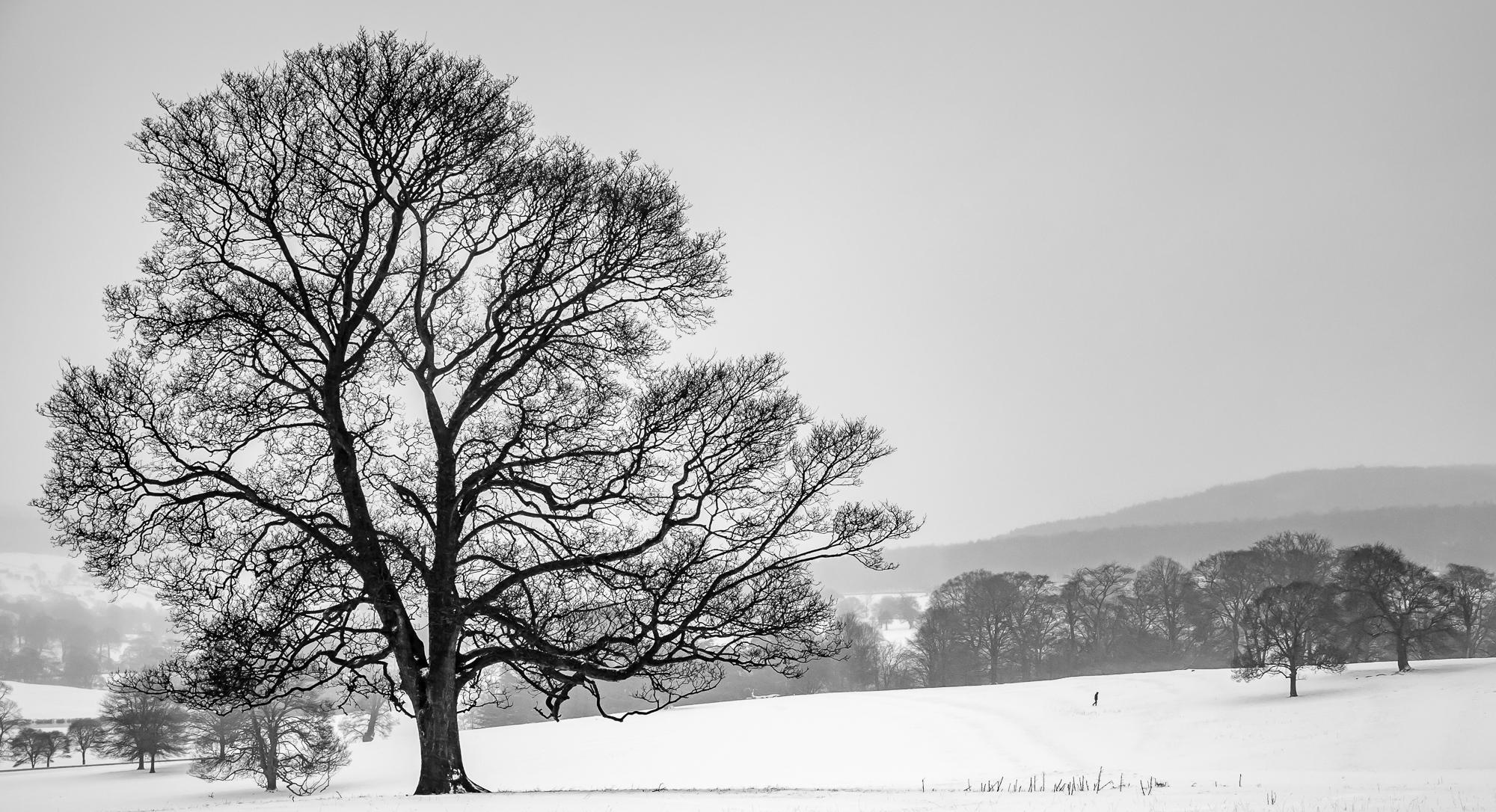 Chatsworth © Mick Ryan