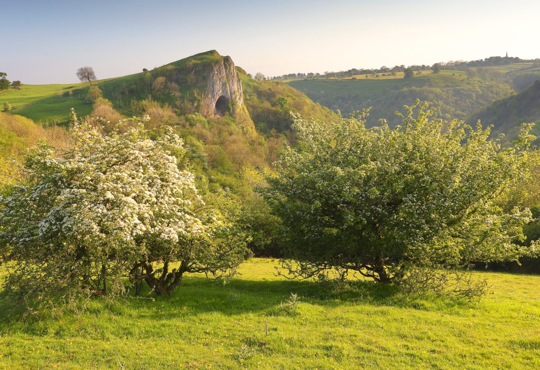 Thors Cave in spring. © Chris Gilbert.