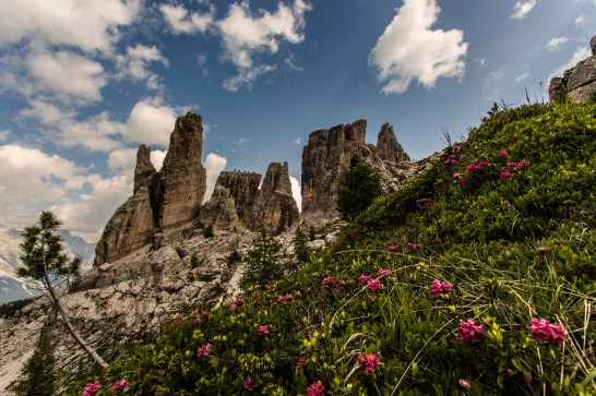 The five towers as viewed from the west. Nikon D610, 14-24 at 18mm, ISO 100, 1/200s at f/9, July ©James Rushforth