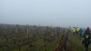 Le FVL dans le brouillard à Génissac