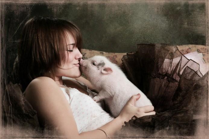 veganism understanding love