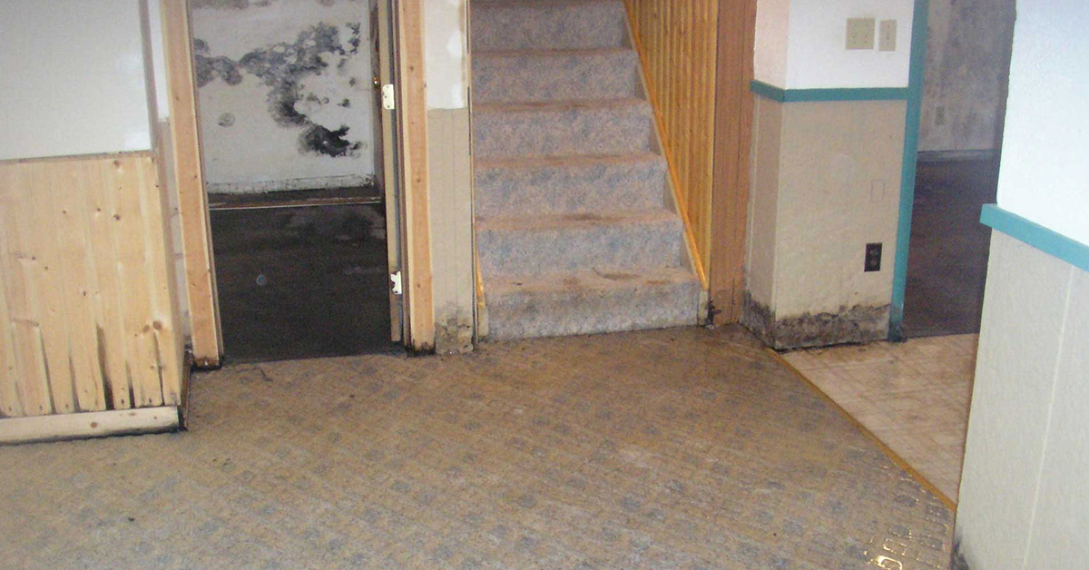 moisture in basement stairs