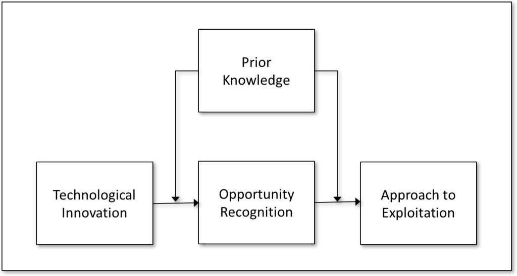 Figure 1. Conceptual model (adapted from Shane 2000).