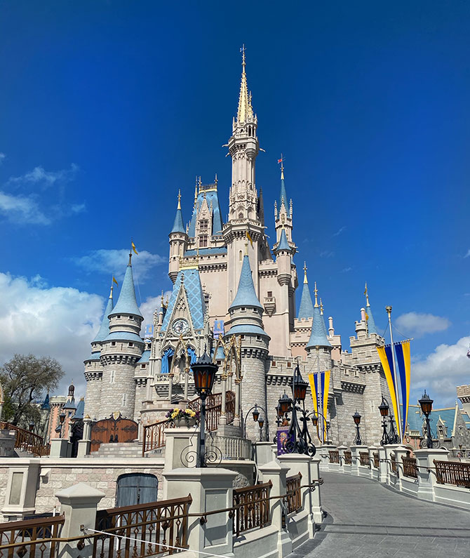 disney for adults disney world castle magic kingdom fountainof30