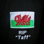 Taff's lament HEAR3
