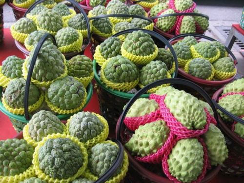 Sugar-apples_4_Taitung_County