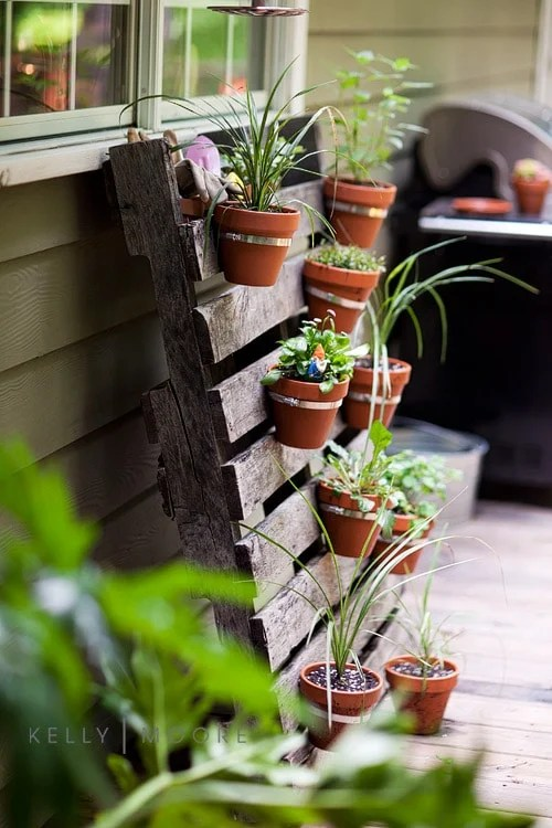 Pallet Planter with terracotta planters and herbs
