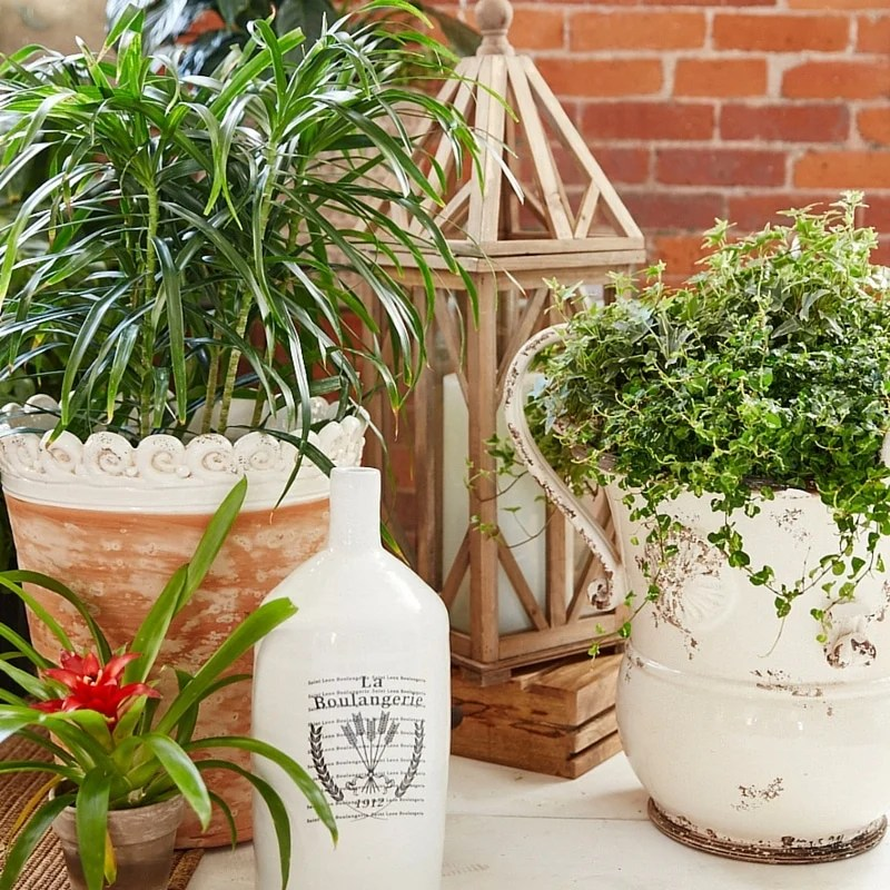 beautiful flowers + homegoods project. Creating a bistro patio set with vintage shutters, flowers and plants