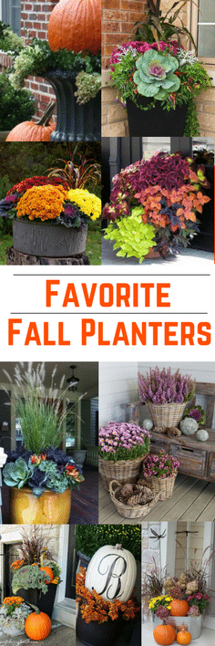 Favorite-Fall-Planters